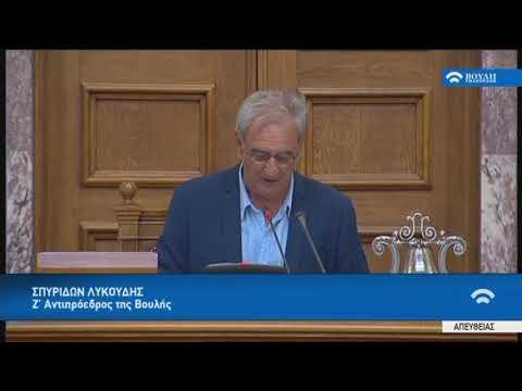 Αναφορά στην Ημέρα Εθνικής μνήμης της γενοκτονίας των Ελλήνων της Μικράς Ασίας από το τουρκικό κράτος έκανε ο Ζ' αντιπρόεδρος της βουλής Σπυρίδων Λυκούδης