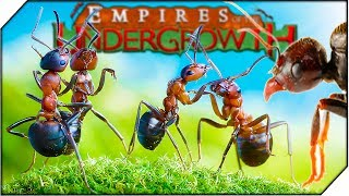 БОЕВЫЕ МУРАВЬИ. СОЗДАЙ СВОЮ КОЛОНИЮ МУРАВЬЕВ - Игра Empires of the Undergrowth обзор (1 СЕРИЯ)