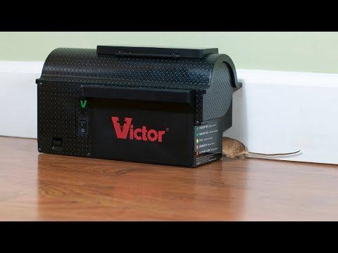 Victor Elektronisk rottefelle - film på YouTube