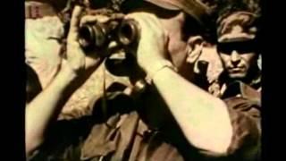 מלחמת לבנון הראשונה צילומים נדירים חלק1