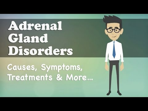 Video Adrenal Gland Disorders - Causes, Symptoms, Treatments & More…