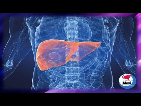 La gestión de la bomba de insulina