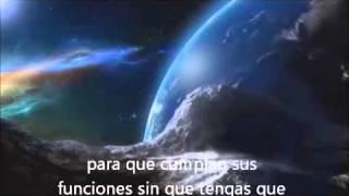 Alan Watts  - Vive y deja Vivir (subtitulado)