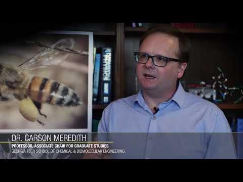 "How honey bee ""glue"" helps pollen stick together"