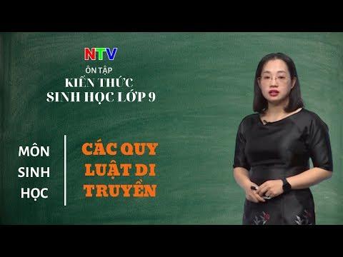 MÔN SINH HỌC 9- ÔN TẬP- Các quy luật di truyền - NGÀY 13/3/2020 (Dạy học trên truyền hình Nam Định)