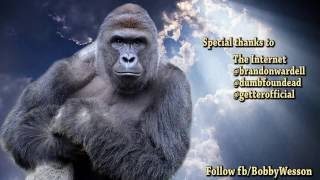 Lose Your Kid - Harambe Eminem Parody - Lose Yourambe