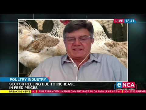 Poultry industry sector reeling due to increase in feed prices