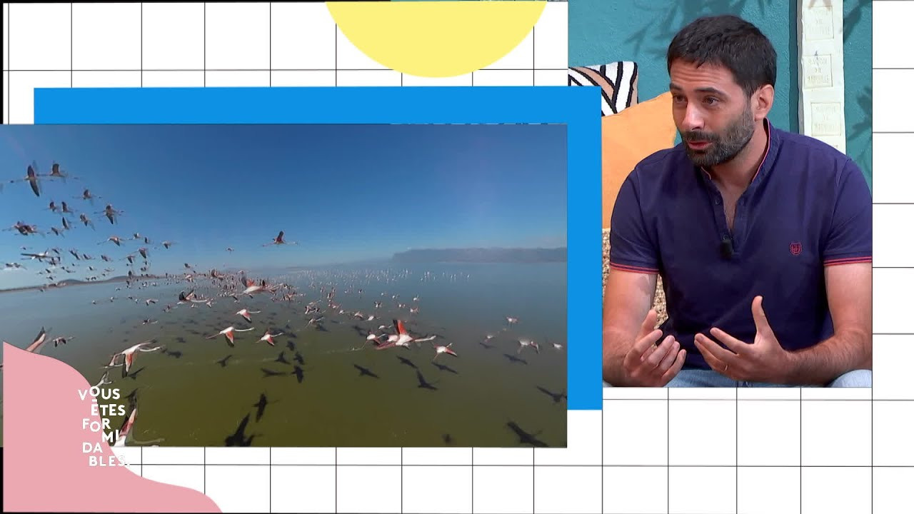 Grégoire Moisson présente Wild Immersion à voir au Parc Phoenix de Nice - #VousEtesFormidables