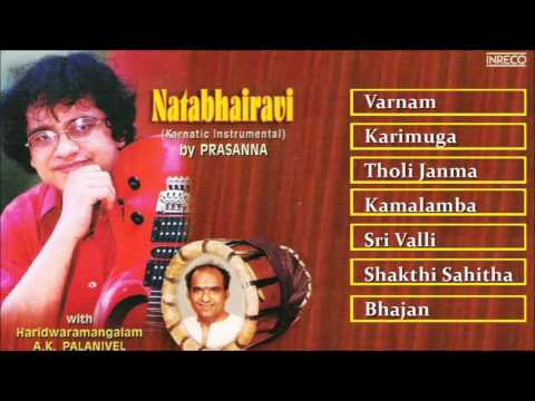 Carnatic Instrumental on Guitar | Prasanna | Natabhairavi | Classical Instrumental | Audio Jukebox