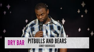 Pitbulls vs. Bears. Corey Rodrigues