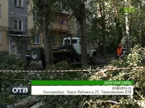 Кто имеет право спилить деревья во дворе? (Всё о ЖКХ, ОТВ, Екатеринбург, 7.08.13)