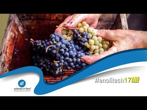 Enolitech 2017 - Prodotti per la cantina e per l'industria del vino