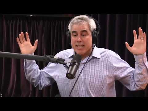 Joe Rogan a Jonathan Haidt o výchově dětí