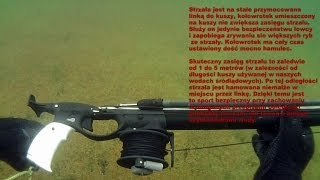 Spearfishing in Poland
