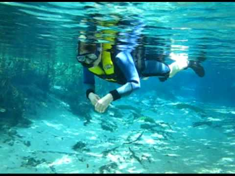 buceo con snorkel en Bonito