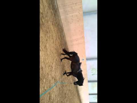 Nach Rückenschmerzen Bein, was weh tut zu tun