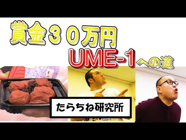 【おもしろ実験】目指せ賞金30万! UME-1への道#2 たらちね研究所