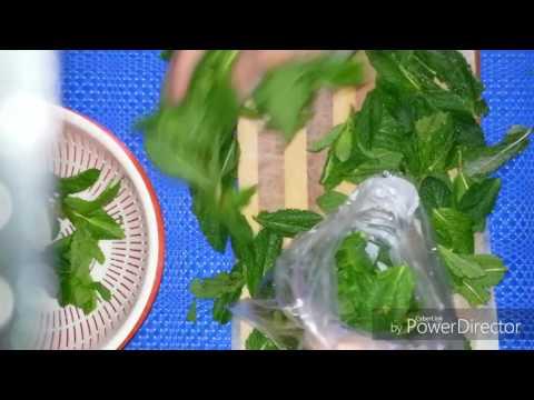 La liqueur du ginseng pour la puissance les rappels