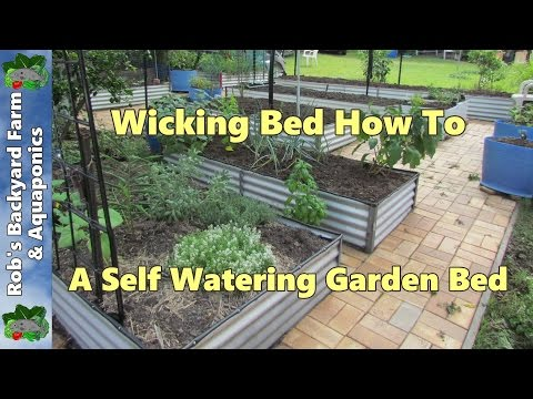 wicking bed how to