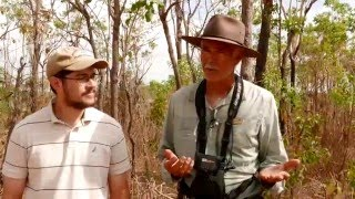 Interview with Bird Guide in Australia