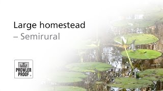 Large homestead - semirural