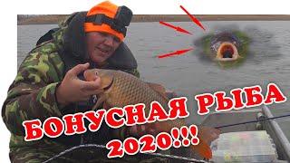 Ростов на дону рыбалка осень 2020