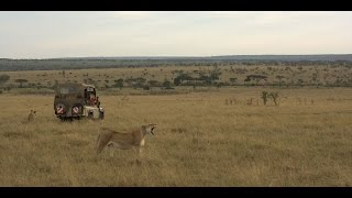 Kenia - Magical Kenya (Africa Travel Association)