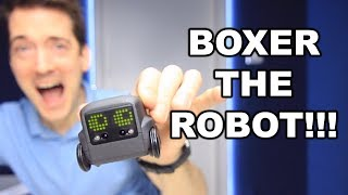 BOXER ROBOT UNBOXING AND REVIEW!