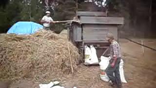 preview picture of video 'Młócenie zboża u Sławka starym sposobem. Młocarnia MSC-7B i traktor 'Kogucik''