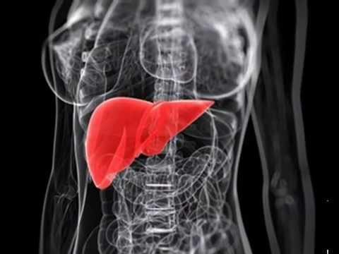 Karaciğer Kanseri Belirtileri