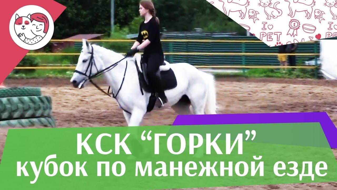 Летний кубок КСК Горки по манежной езде КЮР часть 24 на ilikepet