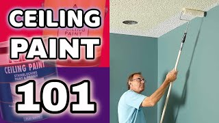 CEILING PAINT GUIDE | What Makes It Different From Wall Paint? | How to Choose Paint