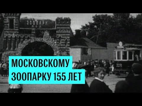 Московский зоопарк открылся для публики 155 лет назад.