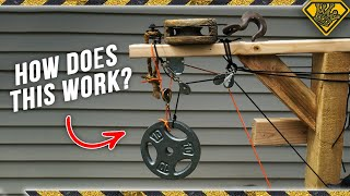 Why Don't Tree Houses Have These? - Video Youtube