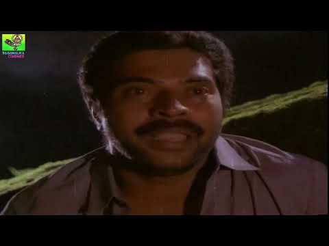 Mammooty Best Scene     Vilichu Vili Kettu Movie Scene    