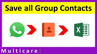 How to save all contacts from whatsapp group in Excel
