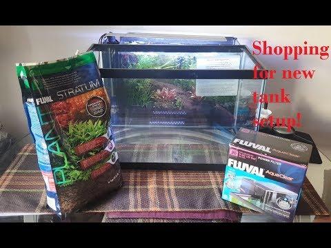 Shopping at Petco - New fish - YoYo (Botia) loach