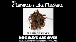 Dog Days Are Over (Breakage Remix)
