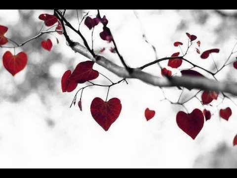 I say a little prayer for you - Burt Bacharach & Aretha Franklin