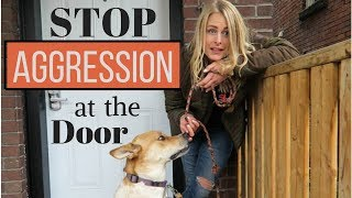 How to Enter the HOME of an 'AGGRESSIVE DOG'