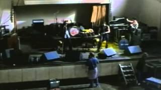 Still Crazy (1998) Video