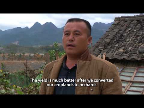 FLR China - Farmers Voices