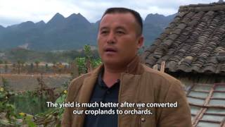Restoring forest landscapes in China: Farmers' voices