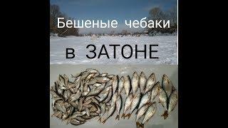 Рыбалка в новосибирске затон о рыбалке