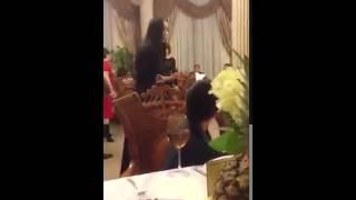 Смотреть онлайн Девушка жениха устроила разборки на свадьбе