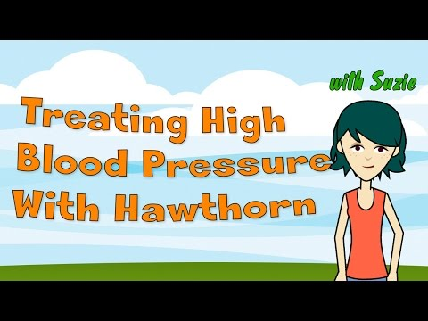 Video Hypertension - Treating High Blood Pressure With Hawthorn