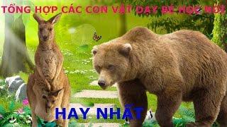 TỔNG HỢP các con vật cho bé yêu tập nói tiếng Việt hay và đáng yêu nhất