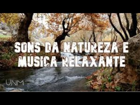 Meditao - Msica relaxante com os sons da natureza  (Relaxing music with the sounds of nature)