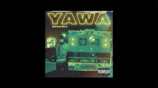 $pacely   Yawa Ft. Kofi Mole (Lyrics Video)