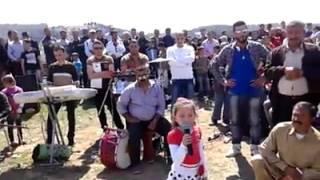 preview picture of video 'جيندار في نوروز 2014 ميدانكي Jîndar Avrazê Newroza Meydankê 2014'